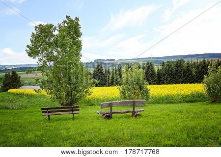 Hilly Saarland Landscape With Rape Field. Lookout Point With Benches