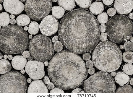 Pile of wood logs for winter, wooden background,stack of wood background black and white concept.
