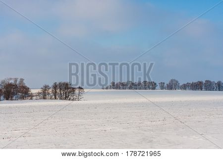 Winter rural landscape with meadows and forest in Russia
