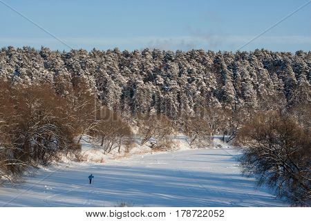 A skier runs in the frozen river among woodlands in the winter