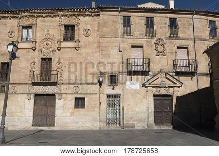 Salamanca (Castilla y Leon Spain): facade of the historic building known as Palacio de Monterrey