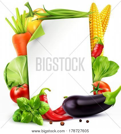 Menu pattern with vegetables (carrots, cabbage, basil, tomato, eggplant, corn, bok choy)