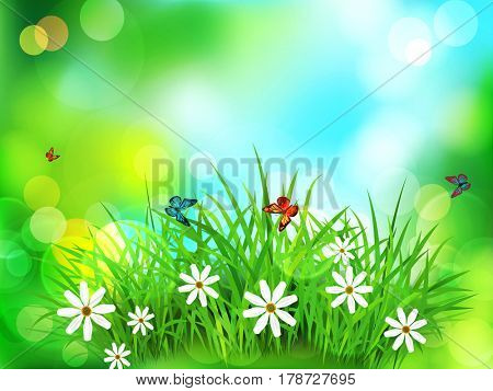 Green grass with white flowers, butterflies on a  spring, meadow, blurred background. Element for design.