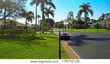 View of the golf resort with family houses lawn and palm trees along the road under blue sky in Naples Florida USA