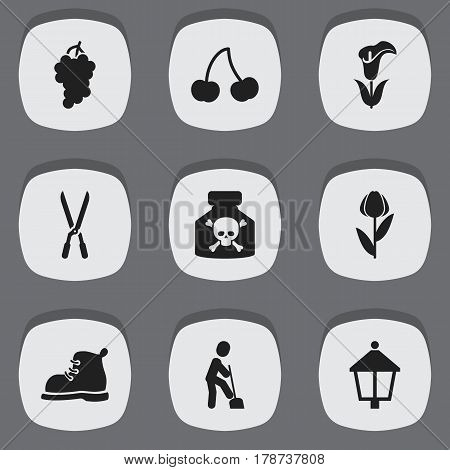Set Of 9 Editable Agriculture Icons. Includes Symbols Such As Footwear, Venom, Lily And More. Can Be Used For Web, Mobile, UI And Infographic Design.