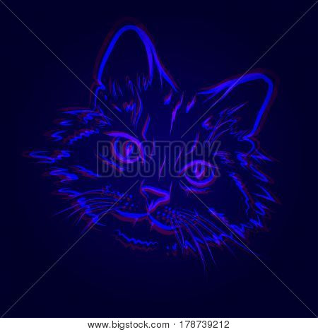 Vector illustration of doubly blue contour cat on the mazarine background.