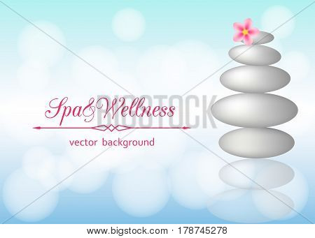 Spa background with stones pebbles and flower plumeria. Vector 3d illustration on Wellness theme.
