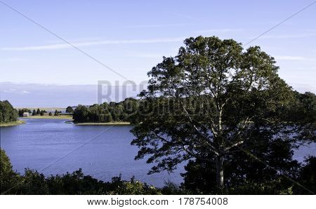 Wide view of the landscape and lake behind the Salt Pond Visitor Center in Eastham, Cape Cod Massachusetts large tree in the foreground on a bright sunny day with blue skies and clouds in mid September.