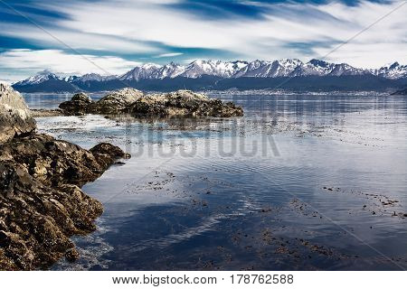 Beagle channel and Ushuaia in background. Bird starting to fly on the water (Argentina)