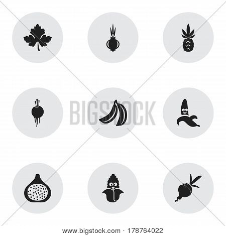 Set Of 9 Editable Food Icons. Includes Symbols Such As Turnip, Passion Fruit, Ananas And More. Can Be Used For Web, Mobile, UI And Infographic Design.