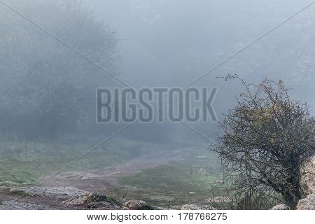 Shot of trail in mountain valley in fog. Torcal in Antequera Malaga