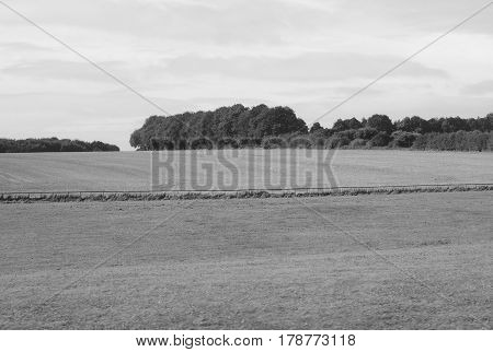 English Country Panorama In Salisbury In Black And White