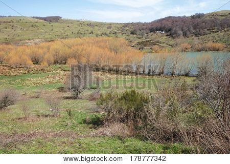 land around the Cartolari Lake in Nebrodi Park, Sicily