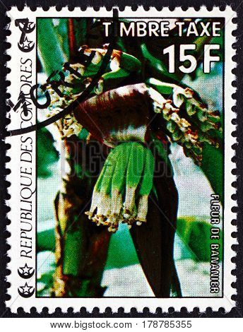 COMOROS - CIRCA 1977: a stamp printed in Comoros shows Blooming Banana Flowering Plant circa 1977