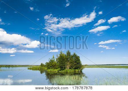 Pristine Nature Lake Serenity
