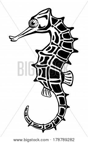 hand drawn isolated seahorse on white background