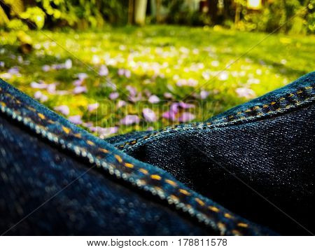 Jacaranda petals in green grass and blue jeans