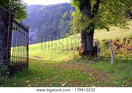 Travel To Sankt-wolfgang, Austria. The Iron Gates On The Green Meadow With The Mountains On The Back