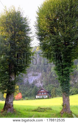 Travel To Sankt-wolfgang, Austria. The High Green Trees On The Green Meadow With A House And Mountai