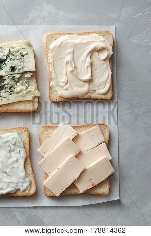Various types of cheese on toasts close up