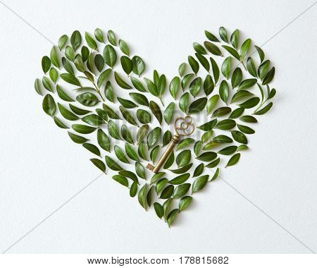 Green leaves arranged in heart shape with vintage key over white background