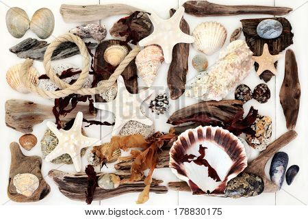 Abstract of driftwood, seashells, seaweed, rope  and rocks from the beach on wooden white background.