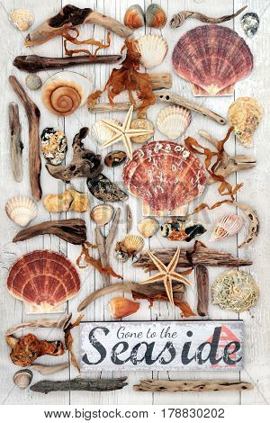 Rustic gone to the seaside sign with abstract design of driftwood, seashells, rocks and seaweed on distressed white wood background.