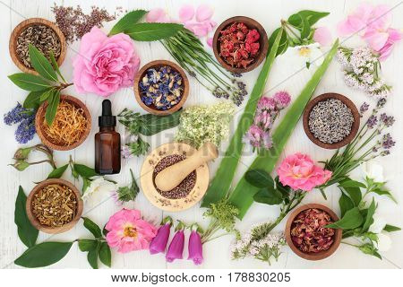 Healing flower and herb selection used in natural alternative medicine on distressed white wood background.
