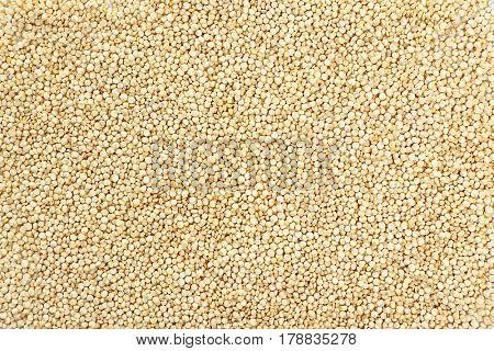 Raw quinoa seeds background