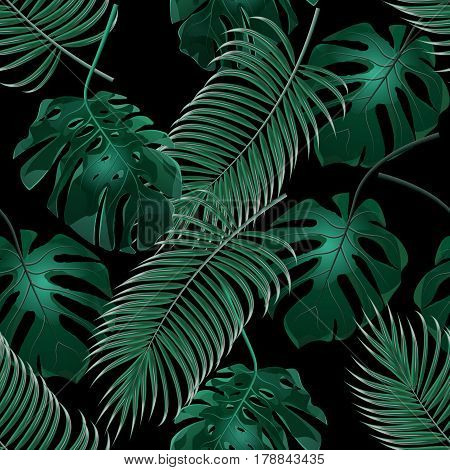 Green tropical palm leaves and monstera. Jungle thickets. Seamless floral pattern. Isolated on a black background. Vector illustration