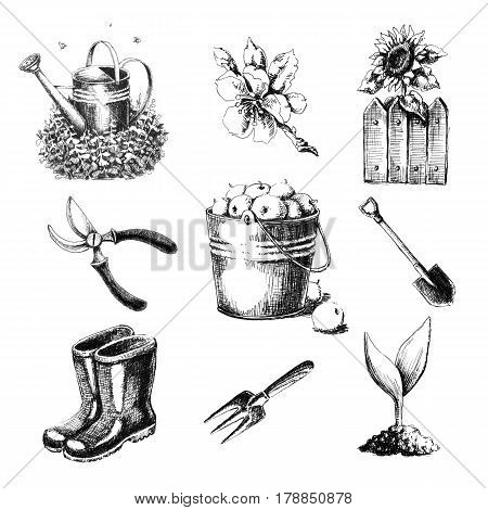 Gardening set. Hand drawn sketches on a white