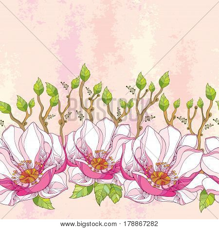 Vector seamless pattern with ornate magnolia flower in pink and green leaves on the textured background in pastel color. Floral background in contour style for summer design.