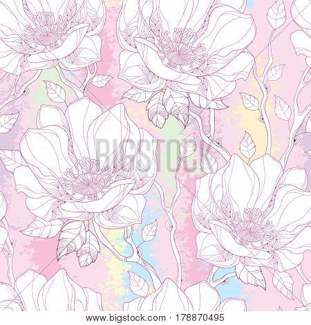 Vector seamless pattern with white magnolia flower and ornate leaves on the textured background in pastel color. Elegance floral background in contour style for summer design.