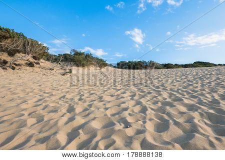 desert dunes piscinas beach in sardinia isle italy