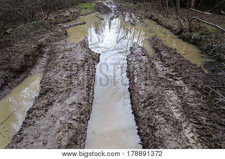Forest dirt road after rain deep rut with muddy water spring time