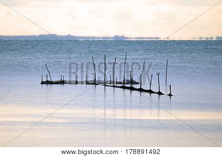 Fishing nets shot in the middle of lagoon in Italy, Valle Cavanata nature reserve.