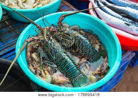 Sale Of Lobsters In The Markets Of India