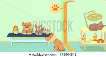 Veterinary clinic horizontal banner concept. Cartoon illustration of veterinary clinic vector horizontal banner for web