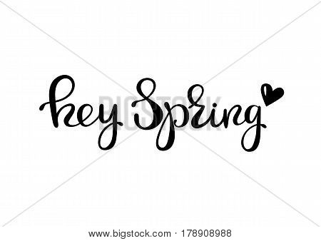 Hey spring - lettering design. Ink hand drawn letters. Vector illustration.