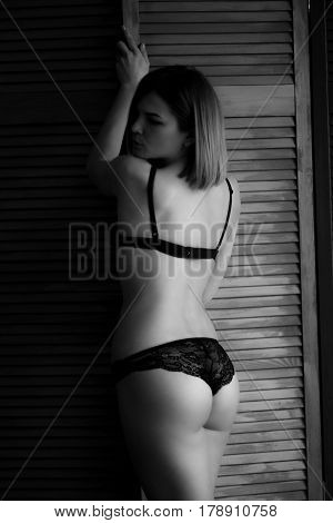 Attractive girl in lingerie. Girl in black lingerie.Beautiful female in lingerie