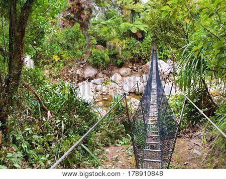 Swingbridge On The Heaphy Track
