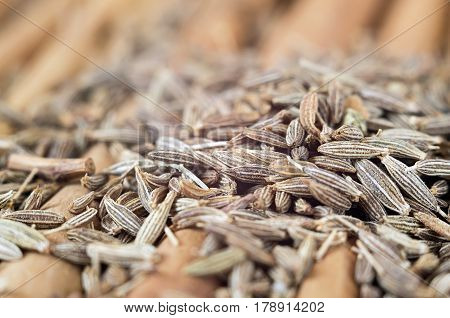 Lots of caraway seed on cinnamon sticks. Selective focus.