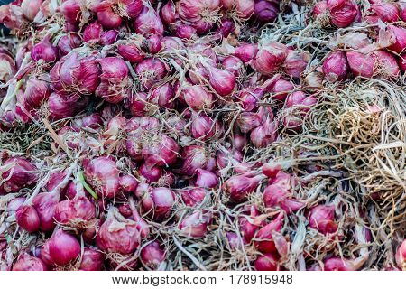 red Shallots in local market thailand .