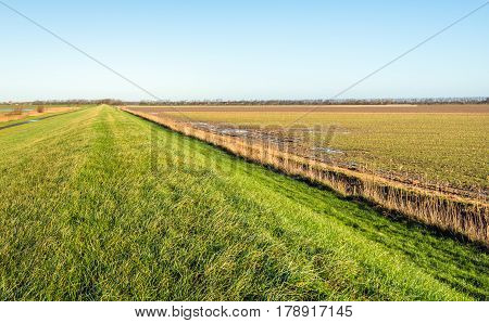 Seemingly endless dike covered with green grass in a flat agricultural landscape in the Netherlands. It is a sunny day in the fall season.
