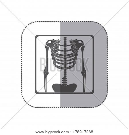 sticker monochrome pictogram skeleton bones radiography vector illustration