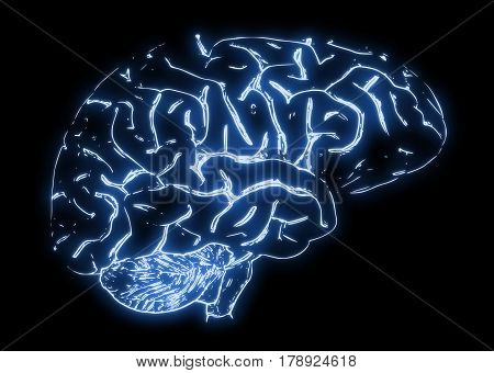 Illustration of a human brain on a black background.
