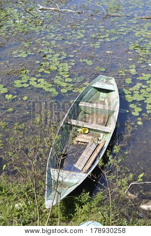 Rowboat moored between the rich coastal vegetation in the lake. Top view