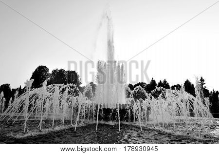 The gush of water of a fountain in St. Petersburg Russia. Black and white.