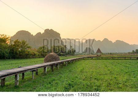 Walk way across rice field in Vang Vieng Laos