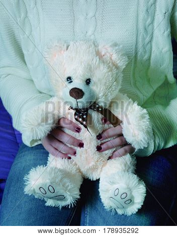Soft teddy bear with white teddy bear shape that is endearing.